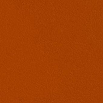 orange_6019