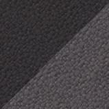 Musta Antrasiitti